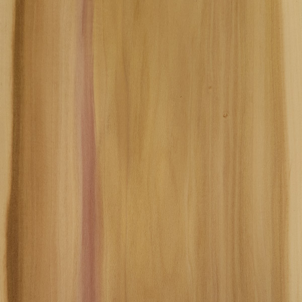 Burma Tulipwood